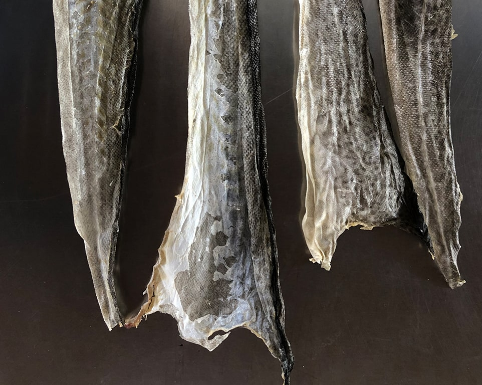 dry-and-frozen-fish-skin-featured-min